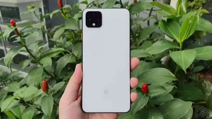 Google Pixel 4 (vista traseira)