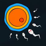 Sperm Simulator 1.3.0 APK MOD Unlimited Money