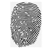 Fiberio: Biometrischer Touchscreen mit Fingerabdruckerkennung