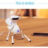 Antbo: Roboterbausatz für Kinder sucht auf Indiegogo nach Geldgebern