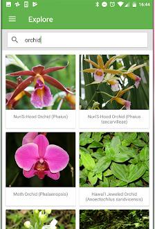 plantsnap_screen