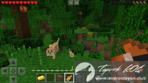 minecraft-pocket-edition-v0-14-0-build-2-full-apk-2