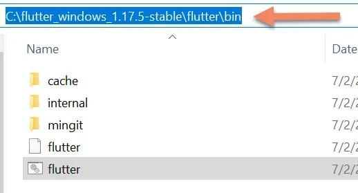 flutter bin directory