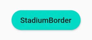 stadiumborder RaisedButton