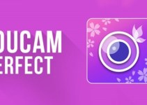 descargar YouCam Perfect Pro