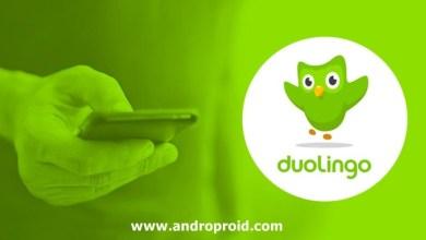 تحميل تطبيق Duolingo لتعلم اللغات للاندرويد