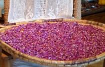 Rose petals drying.