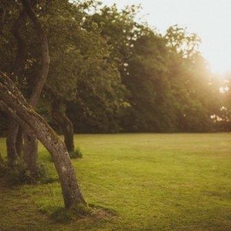 Non-Resi for Nature and Nourish Yoga Retreat