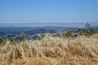 View from the top of the hill, near LA Honda, California