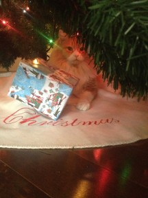 Jean Luc under the tree