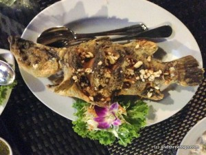A Deep Fried Fish with Garlic, so simple, so fresh, so savory! I definitely recommend this dish!
