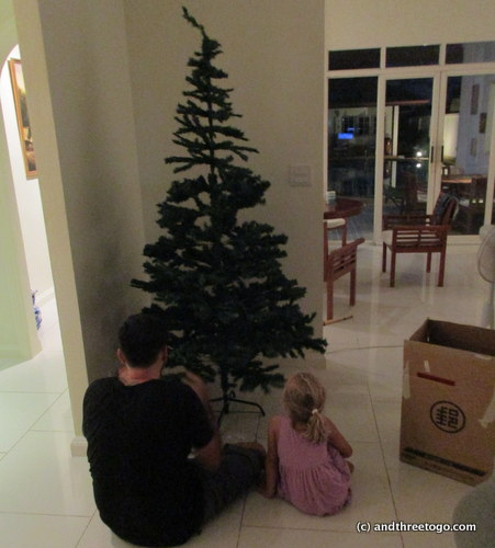 Getting our fake tree set up for decorating. One can buy real Christmas trees here, but a 4-5 foot tree (from France) costs over $100 US!!!! So we have a fake tree. I sure miss the tree smell though.