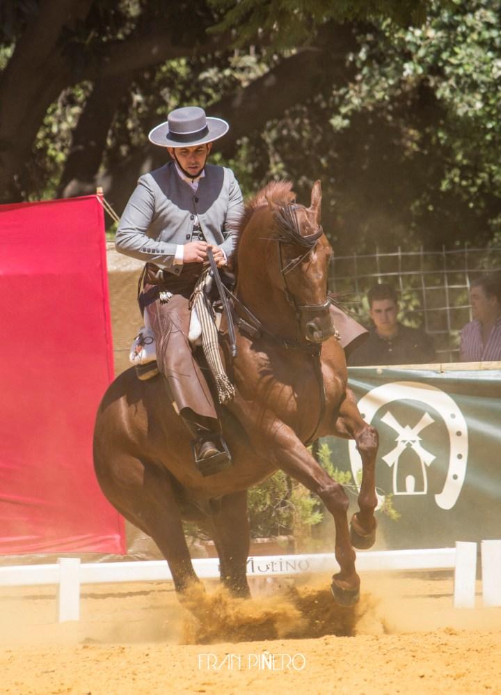 """Amador Martín e """"Indiano"""" en el I Gran Premio de Doma Vaquera Ciudad de Sevilla / Fran Piñero"""