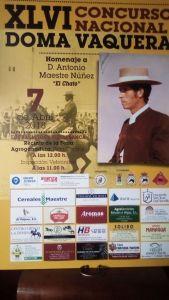 Detalle del cartel del XLVI CNVB de Los Palacios y Villafranca