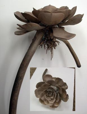 Andy Rader: Bronze Cast Echeveria Plant - cast