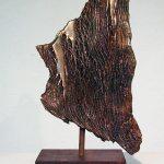 Andy Rader - Bronze - Texture Study