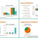 Andy Rader - Graphic Visualization - Financial Analysis