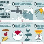 Andy Rader - Social Media - Salmonella Awareness Campaign