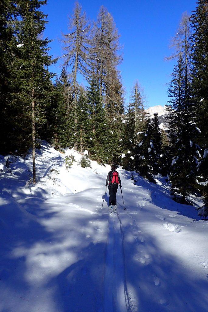 Ornella Valley trail #1