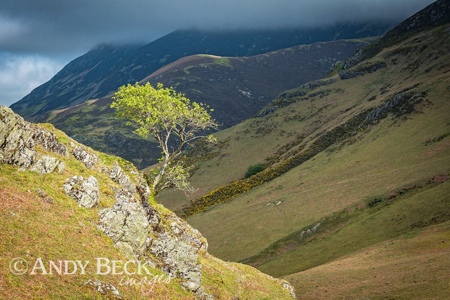 Rannerdale from Low Bank