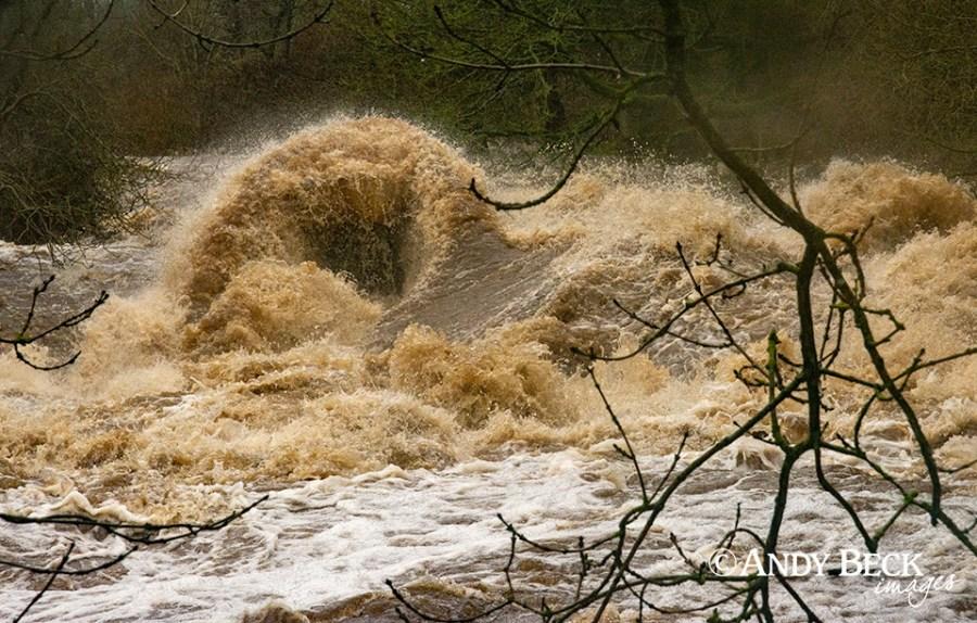 River Greta in spate