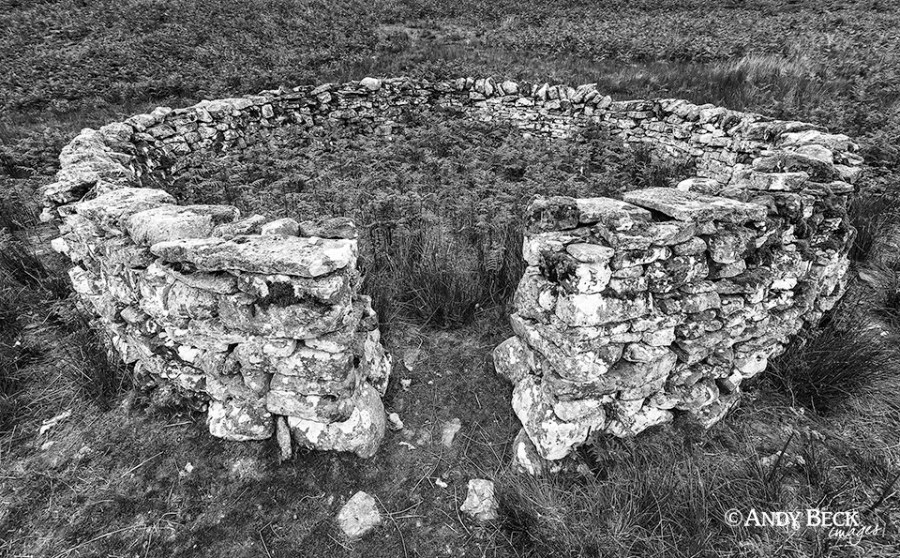 The Sheepfold, Cotherstone Moor