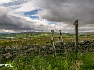 View across the dale, near Mickleton