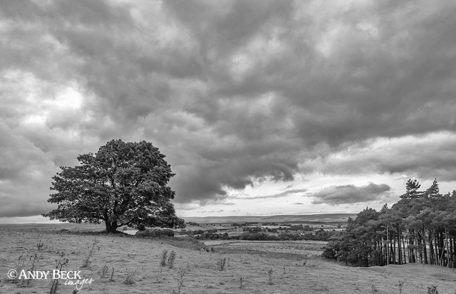 storm clouds over Bowes