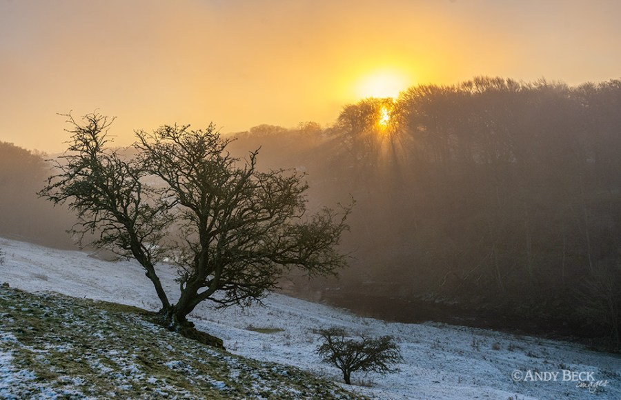 Sunrise through the fog, Bowes