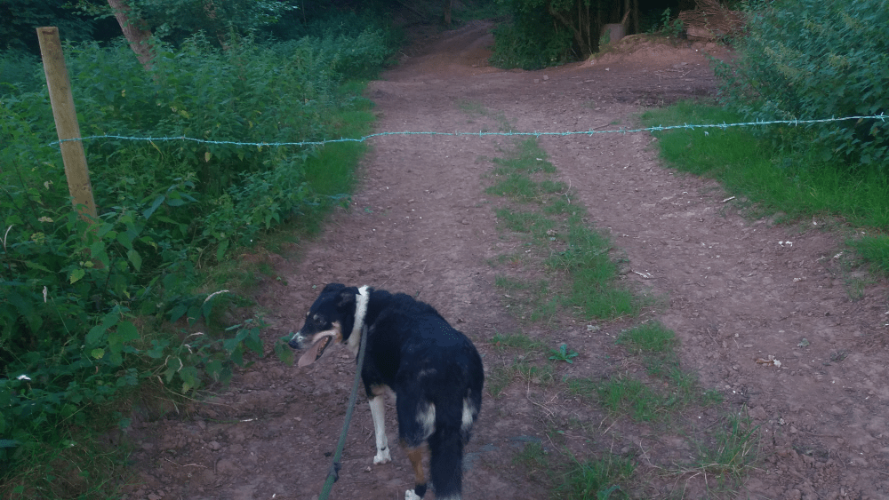 I found a bridleway blocked by barbed wire – what to do if you find an obstructed path