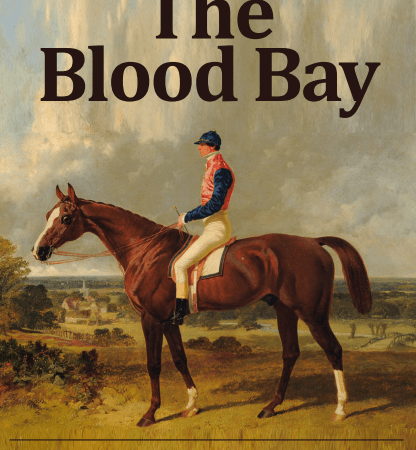 Designs for Ludlow's new pub, the Blood Bay, published – they look good