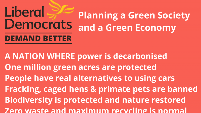 Election: Lib Dems plan a green revolution for a green society and economy