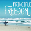 5 Principles to Finding Freedom on AndyBOndurant.com
