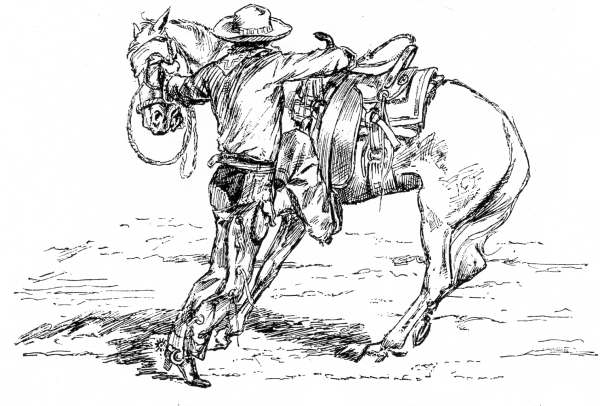 Sketch of a cowboy saddling a horse