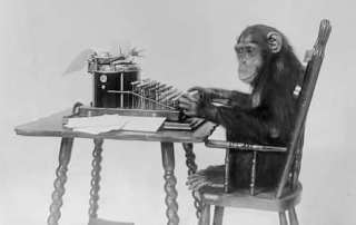 Chimpanzee at the Typewriter