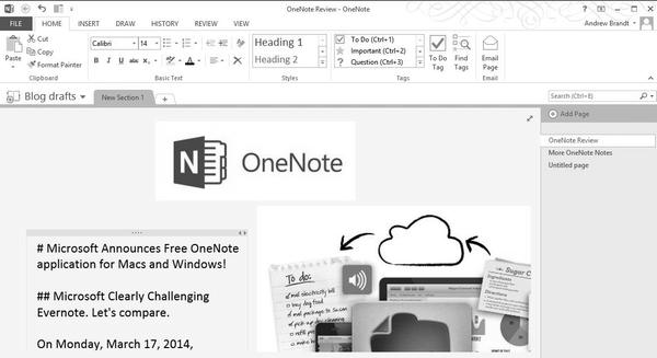 OneNote Screen Shot - http://andybrandt531.com