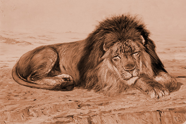 Drawing of a lion - on Frugal Guidance 2