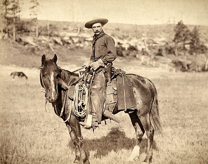 A cowboy on a horse