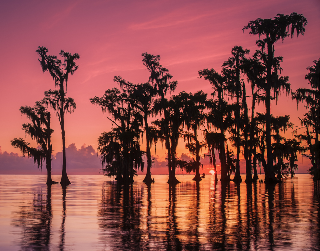 Sunrise in Lake Maurepas swamp