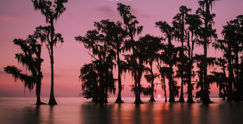 2018 Louisiana swamp photography calendar