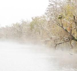 snowy foggy bayou photography
