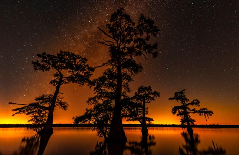 Milky Way atchafalaya basin swamp photography
