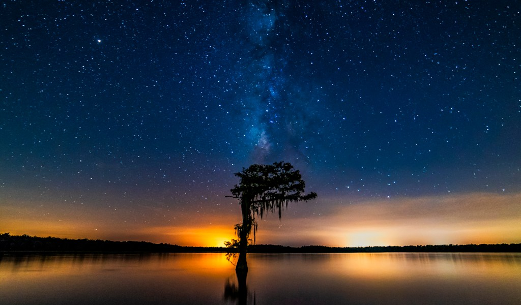 swamp photography milky way