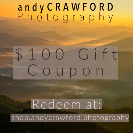 fine-art photography gift coupon