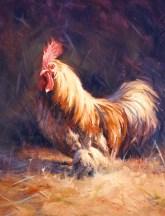 bantam-rooster