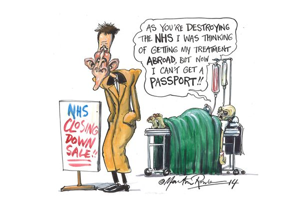 Image result for NHS land cartoon