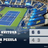Announcer Andy Taylor. 2020 US Open. Round 3 Petra Kvitova