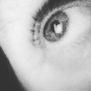 self(eye)