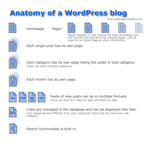 Wordpress Structure