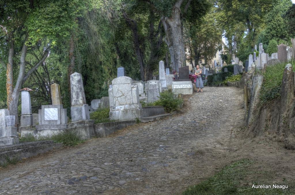 Cimitirul_Sasilor_Sighisoara-8
